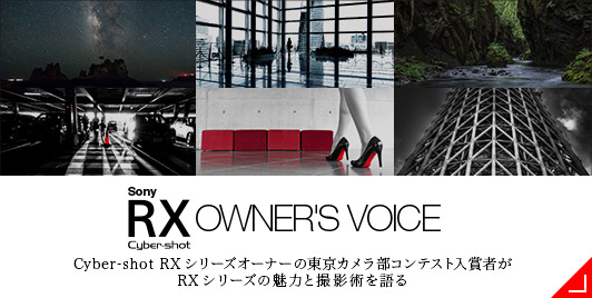 SONY Cyber-shot RX OWNER'S VOICE